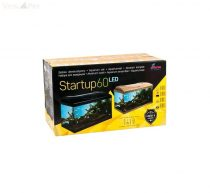 Diversa Startup LED Expert szögletes fekete 60 akvárium szett 13 w AJÁNDÉKKAL!