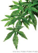 EXO-TERRA műnövény  Abuliton L