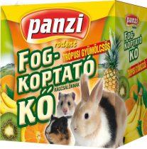 Panzi fogkoptató trópusi gyümölcsös
