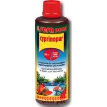 SERA Pond Cyprinopur 500 ml 10 köbre fertőző hasvízkór, tavaszi