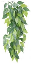TRIXIE műnövény Ficus 30 cm