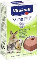 Vitakraft Sel Plus 40 g (nyalósó rágcsálóknak)
